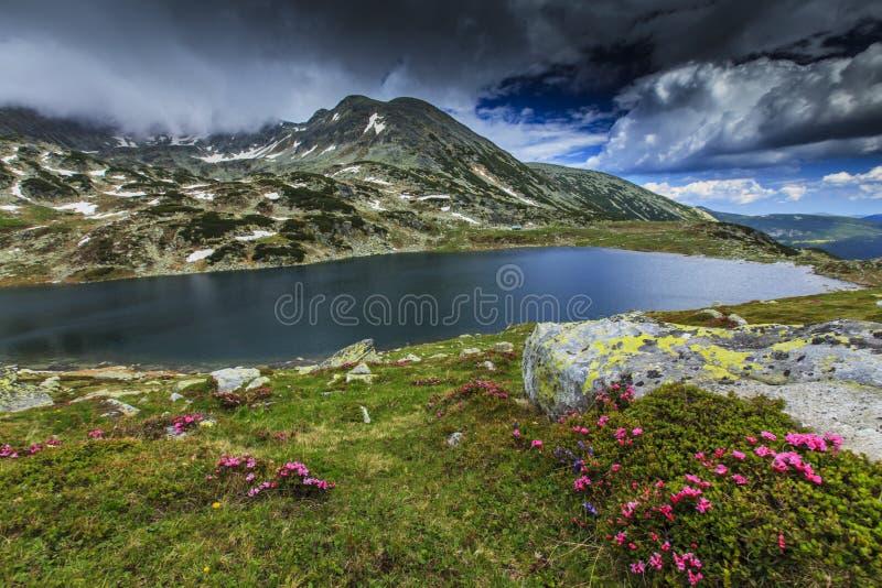 Schöne Gebirgslandschaft im Sommer lizenzfreie stockbilder