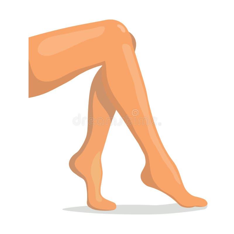 Schöne gezogene weibliche Beine Schließen Sie herauf Frauen-Fahrwerkbeine stock abbildung