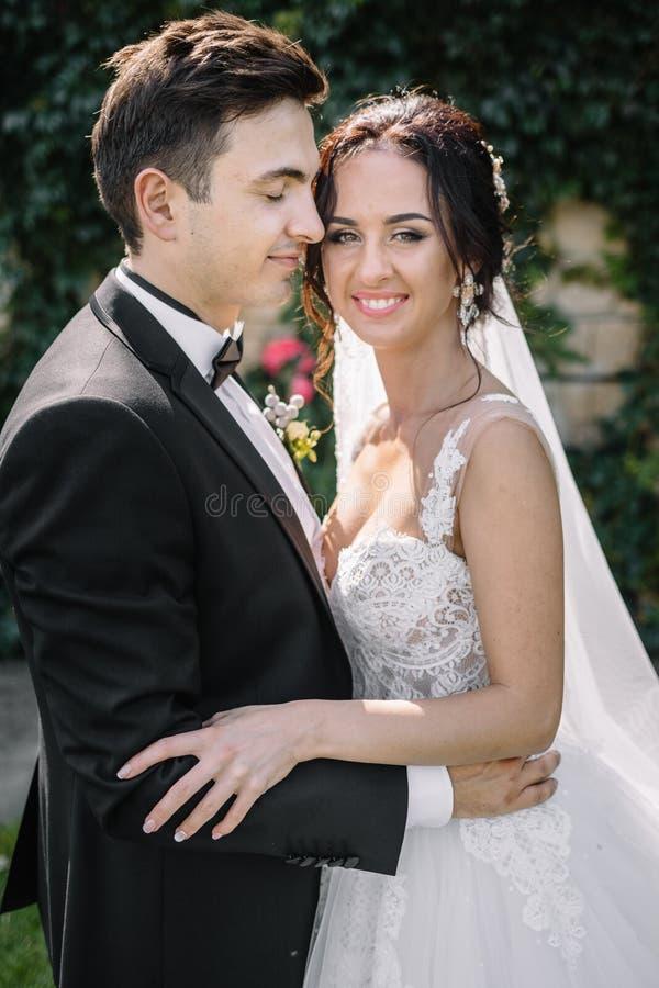 Schöne glückliche junge Braut, die hübschen Bräutigam in der sonnenbeschienen Gleichheit küsst lizenzfreie stockfotografie