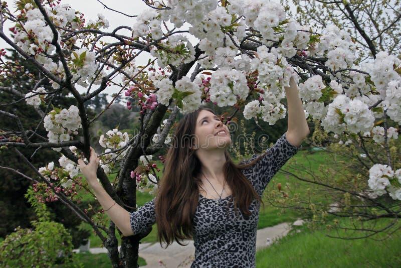 Schöne glückliche junge Frau, die Geruch in einem blühenden Frühlingsgarten genießt lizenzfreies stockbild