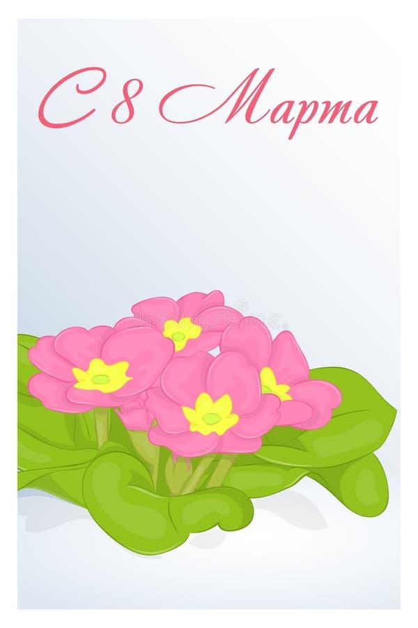 Schöne Glückwunsch- oder Grußkarte für Frauen ` s Tag mit Primel im Schnee Russische Übersetzung: Am 8. März Urlaubsgrüßeba vektor abbildung