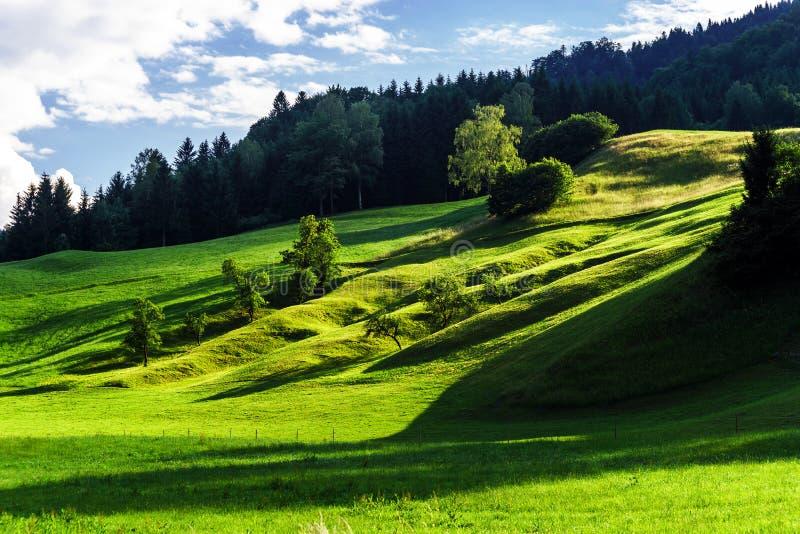 Schöne grüne Hügel stockbild