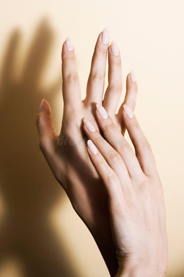 Schöne Hände lizenzfreies stockfoto