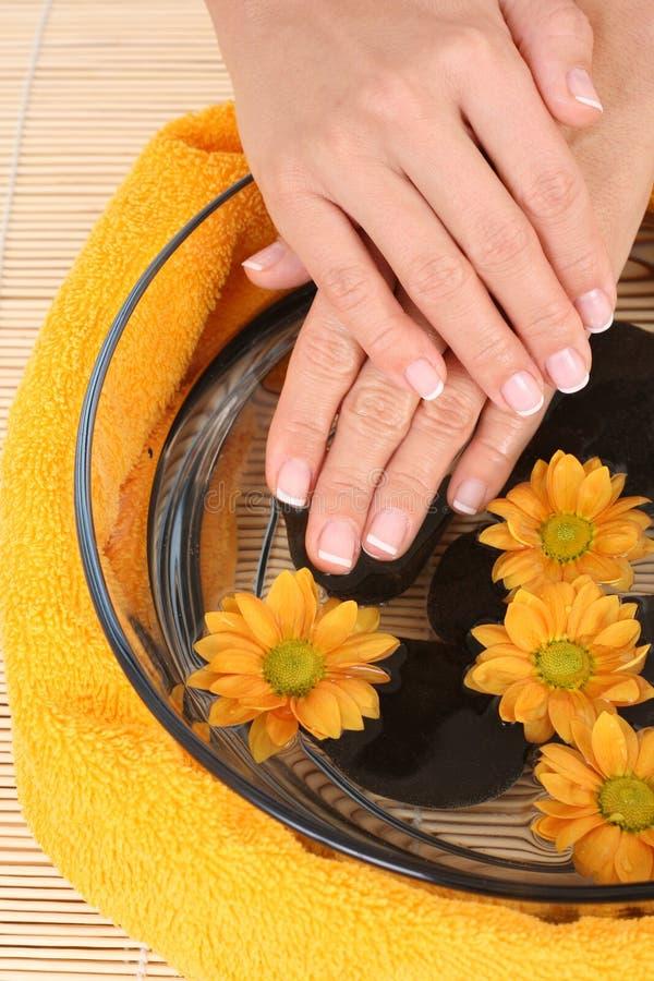 Schöne Hände lizenzfreies stockbild