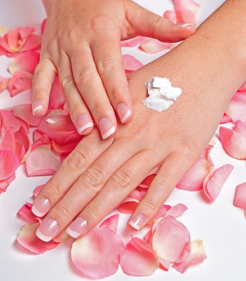 Schöne Hände mit französischer Maniküre stockbild