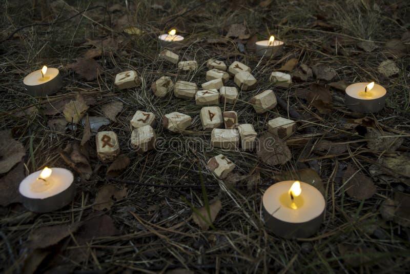 Schöne Halloween-Zusammensetzung mit Runen, dem Schädel, Tarock und Kerzen auf dem Gras im dunklen Herbstwaldritual lizenzfreies stockbild