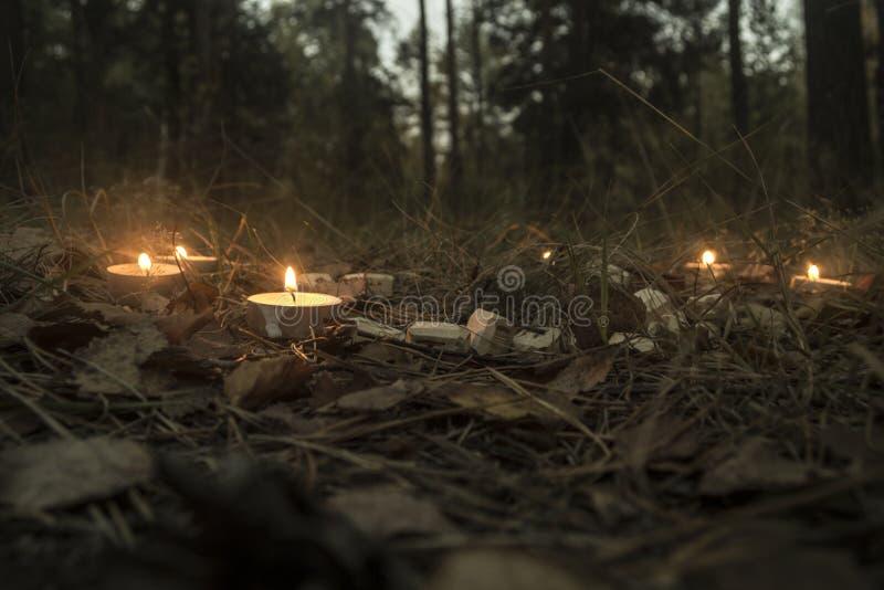 Schöne Halloween-Zusammensetzung mit Runen und Kerzen auf dem Gras im dunklen Herbstwaldritual lizenzfreies stockfoto