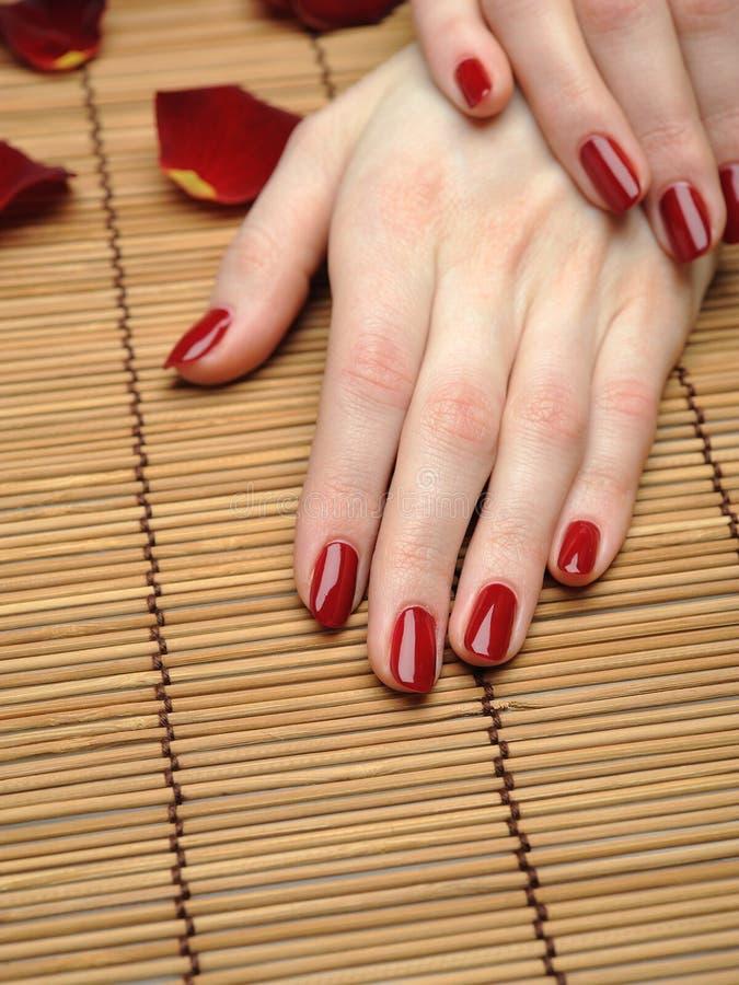 Schöne Hand mit vollkommener Nagelrotmaniküre stockfotos