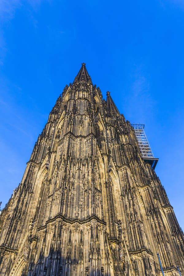 Schöne Haube im Cologne lizenzfreies stockfoto