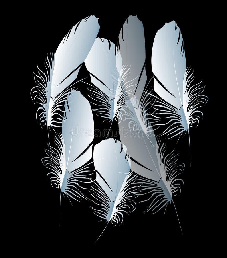 Schöne helle reizende wunderbare abstrakte flaumige weiße Federn auf schwarzem Hintergrundvektor lizenzfreie abbildung