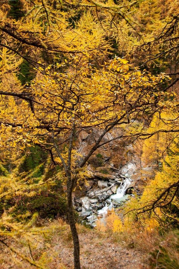 Schöne Herbstlandschaft mit einem Wasserfall in Zermatt-Bereich stockfotografie
