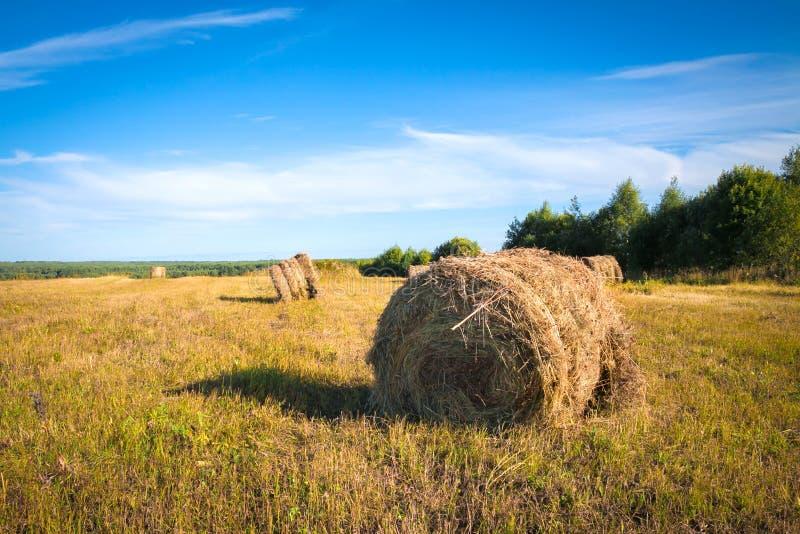 Schöne Herbstlandschaft mit Heugarben auf dem Feld lizenzfreies stockbild