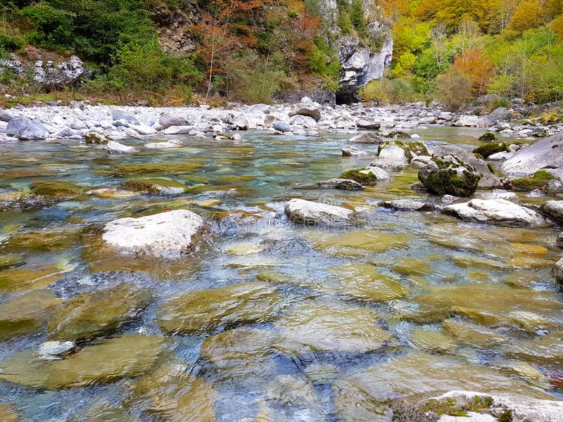 Schöne Herbstlandschaft mit mannigfaltigen Farben des Brauns, der Grüns, der Orangen und der Gelbs auf den Blättern der Bäume nah lizenzfreies stockbild