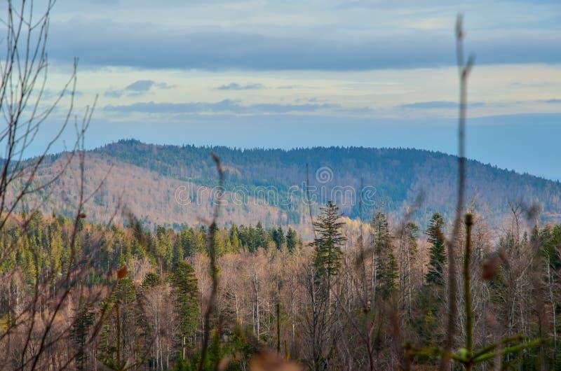Schöne herbstliche Berglandschaft stockfotos