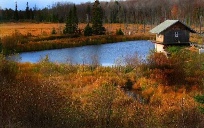 Schöne Herbstszene stockfoto