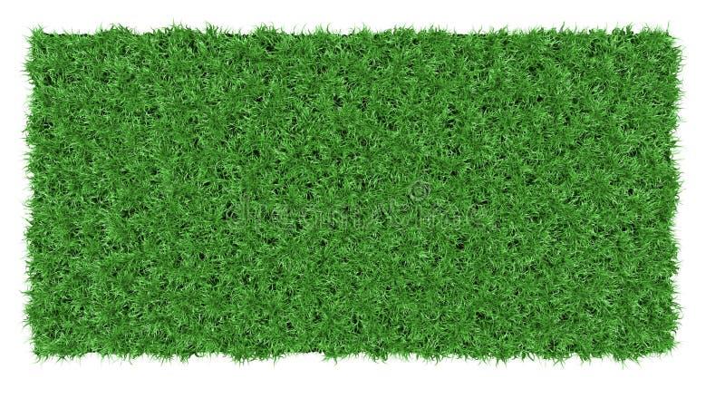 Schöne Hintergrundbeschaffenheit des grünen Grases lizenzfreie stockbilder