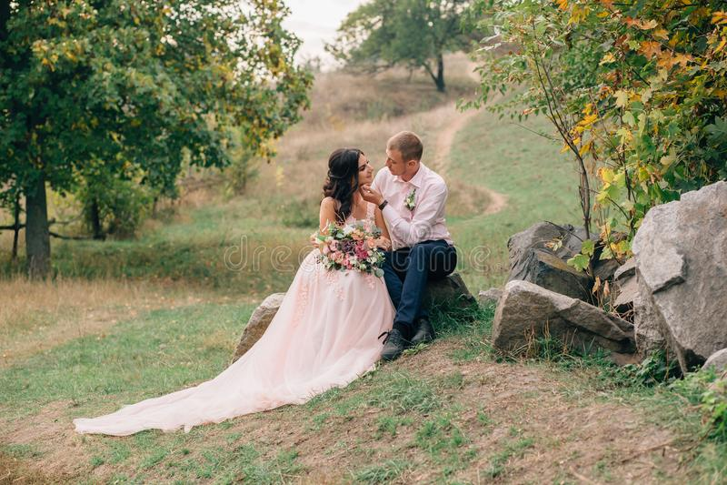 Schöne Hochzeit stockbild
