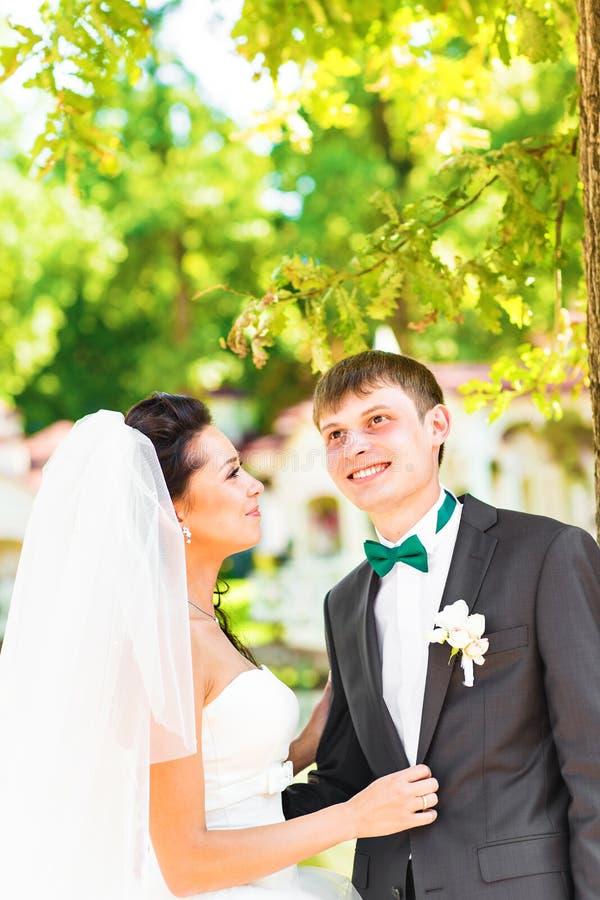 Schöne Hochzeit, Ehemann und Frau, Liebhaber bemannen Frau, Braut und Bräutigam lizenzfreie stockfotos