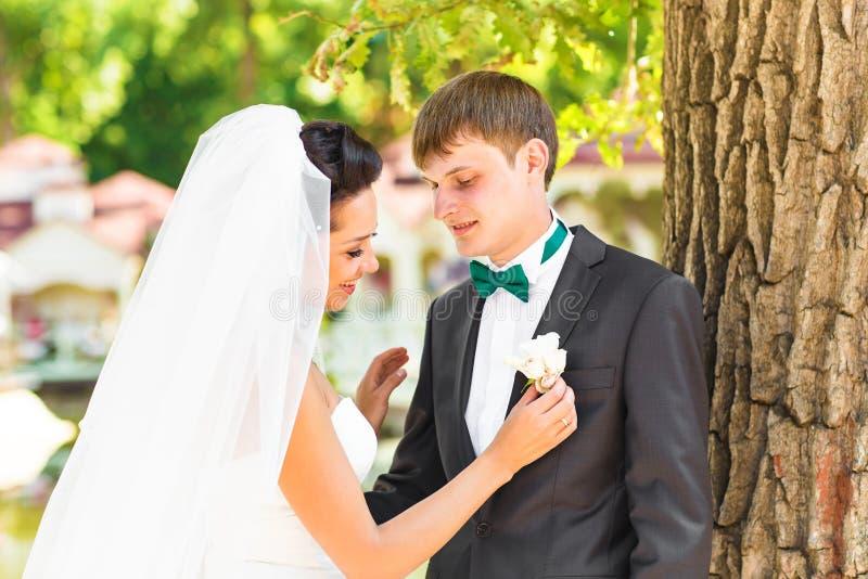 Schöne Hochzeit, Ehemann und Frau, Liebhaber bemannen Frau, Braut und Bräutigam stockbilder