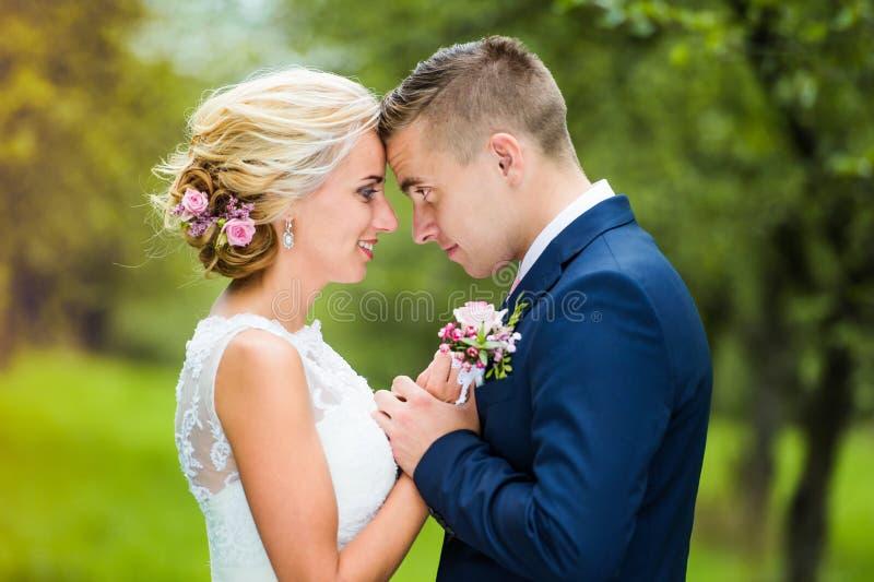 Schöne Hochzeits-Paare lizenzfreie stockfotografie