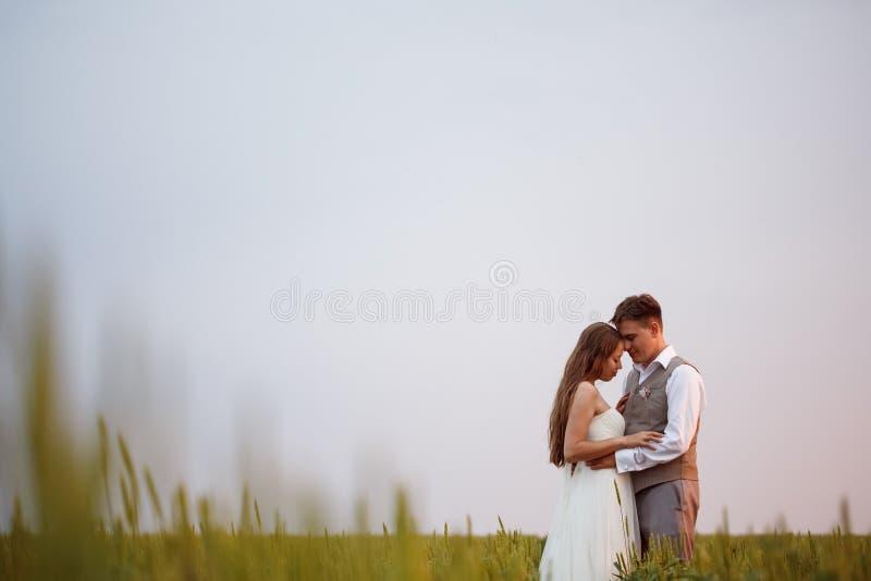 Schöne Hochzeitspaare, die an der Natur aufwerfen stockfotos