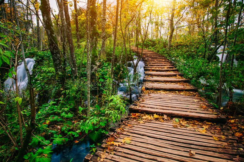 Schöne Holzbrückebahn im tiefen Wald über einem Türkis färbte Wassernebenfluß in Plitvice, Kroatien, UNESCO lizenzfreie stockbilder
