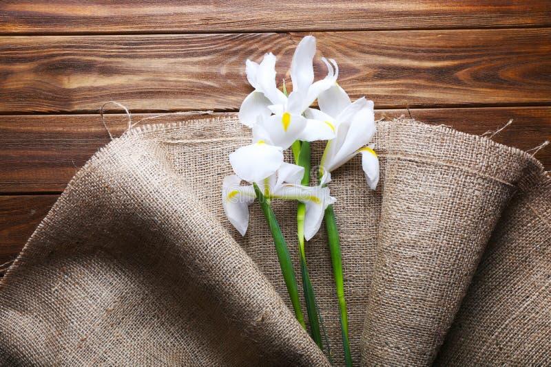 Schöne Iris eingewickelt im Leinwandgewebe auf Holztisch, Spitzenv stockbild