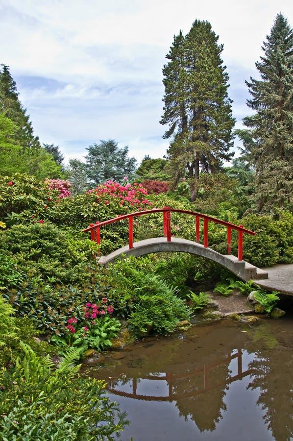 Schöne japanische Garten-Landschaft mit roter Brücke stockfotografie