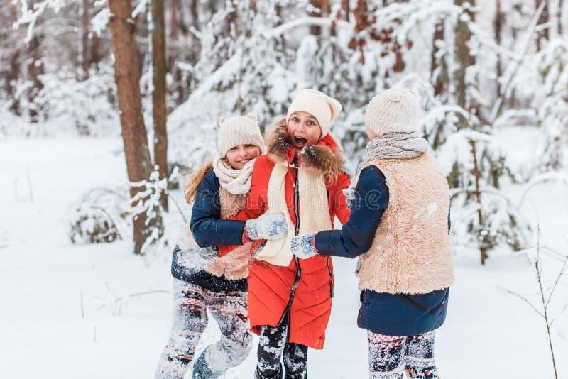 Schöne Jugendlichen, die Spaßaußenseite in einem Holz mit Schnee im Winter haben Freundschaft und Berufslebenkonzept stockbild