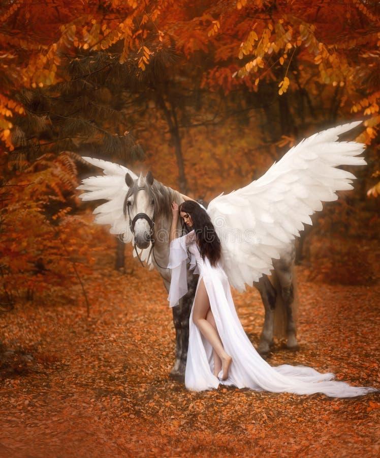 Schöne, junge Elfe, gehend mit einem Einhorn Sie trägt ein unglaubliches Licht, weißes Kleid Das Mädchen liegt auf dem Pferd Arti lizenzfreies stockfoto