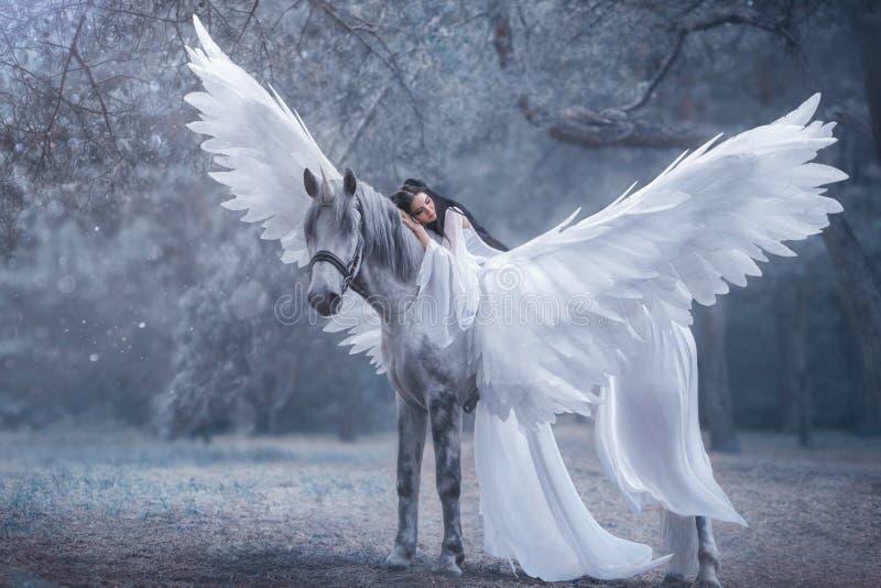 Schöne, junge Elfe, gehend mit einem Einhorn Sie trägt ein unglaubliches Licht, weißes Kleid Das Mädchen liegt auf dem Pferd Slee lizenzfreies stockbild