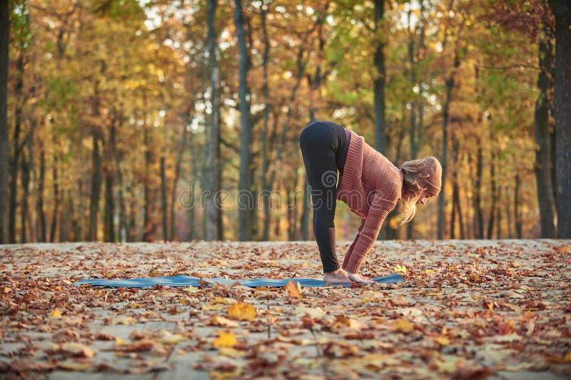 Schöne junge Frau übt Yoga asana Ardha Uttanasana - die Hälfte, die Vorwärtsfaltenhaltung auf der hölzernen Plattform in steht stockbilder