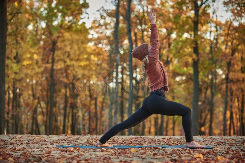 Schöne junge Frau übt Yoga asana Virabhadrasana 1 - Kriegershaltung auf der hölzernen Plattform im Herbstpark stockbilder