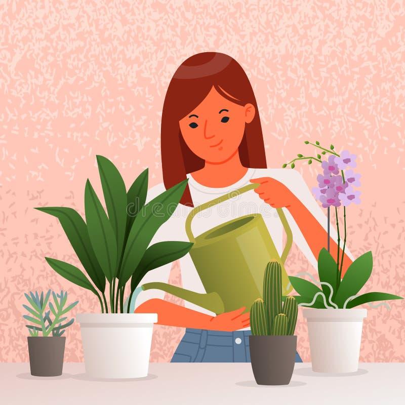 Schöne junge Frau Bewässerungshouseplants Interessieren für Zimmerpflanzen liebhaberei lizenzfreie abbildung