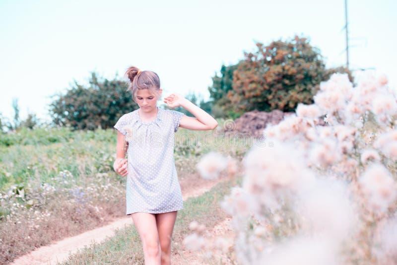Schöne junge Frau, die auf dem Feld im grünen Gras und in Schlaglöwenzahn liegt draußen Genießen Sie Natur Gesundes lächelndes Mä lizenzfreie stockfotografie