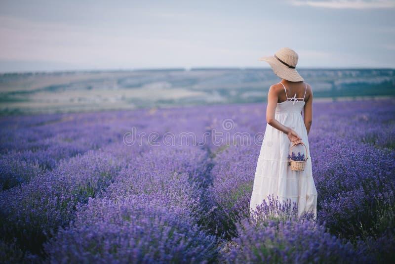 Schöne junge Frau, die auf einem Lavendelgebiet aufwirft lizenzfreie stockfotografie