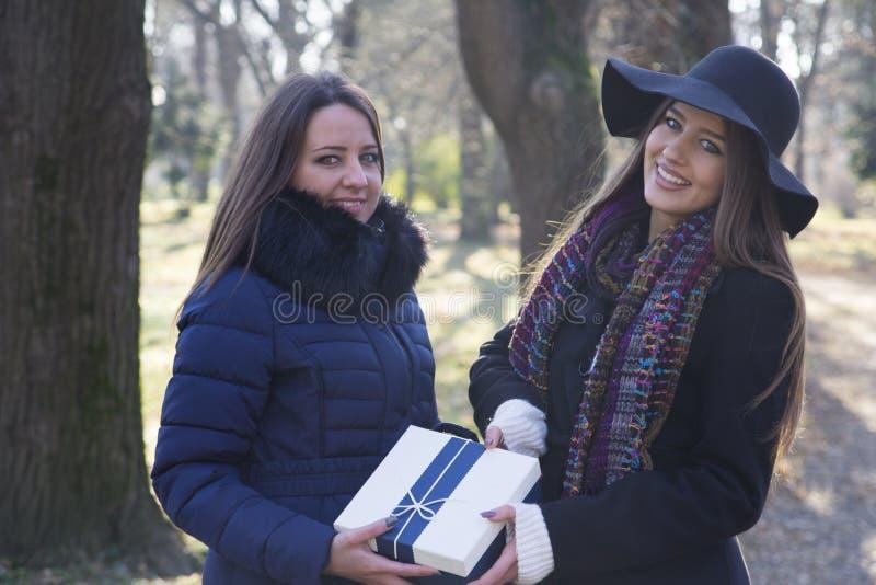 Schöne junge Frau, die ihrem Freund ein Geschenk gibt lizenzfreies stockbild