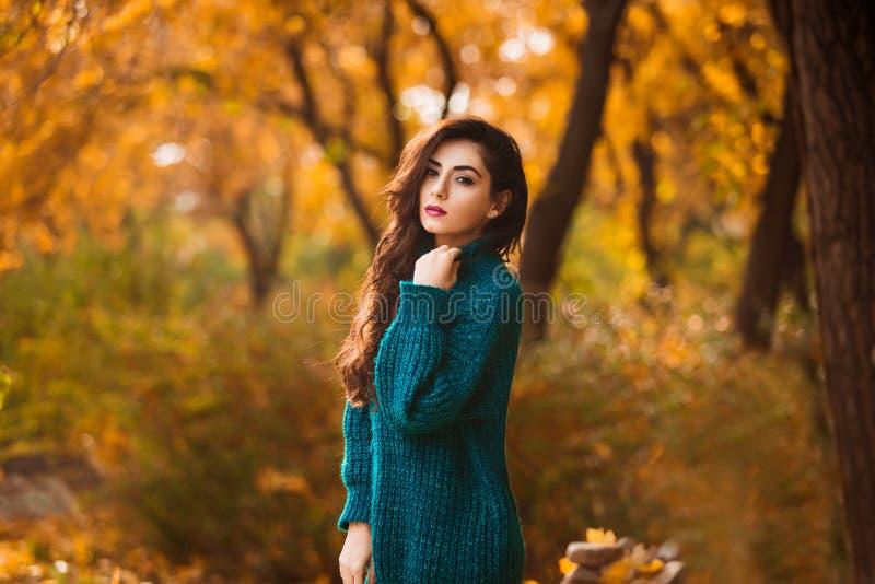 Schöne junge Frau Drastisches Herbstporträt im Freien der sinnlichen Brunettefrau mit dem langen Haar Trauriges und ernstes Mädch lizenzfreie stockfotografie