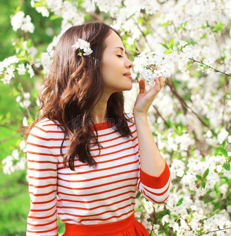 Schöne junge Frau in einem blühenden Frühlingsgarten Blumenblätter von Blumen genießend lizenzfreie stockfotos