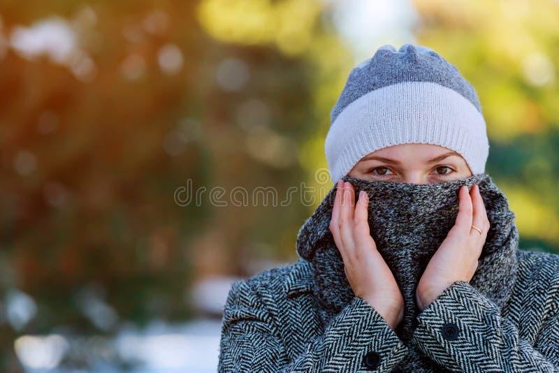 Schöne junge Frau in einer grauen rauhaarigen Pelzmütze und in einem warmen Winter kleidet während der Schneefälle im Winterpark stockfoto