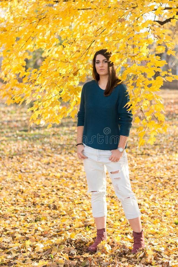 Schöne junge Jugendliche, die unter Baum mit gelben Blättern im Park am Herbst aufwirft lizenzfreie stockfotos