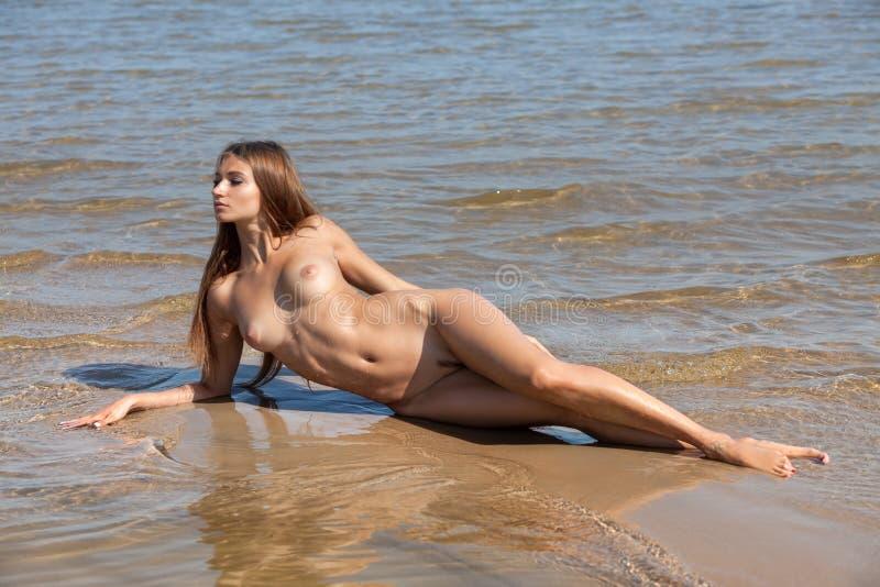 sexy boobs ass pussy
