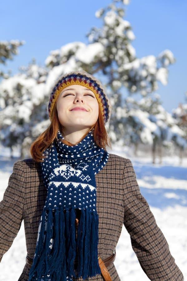 Schöne junge red-haired Frau im Winterpark stockfotos