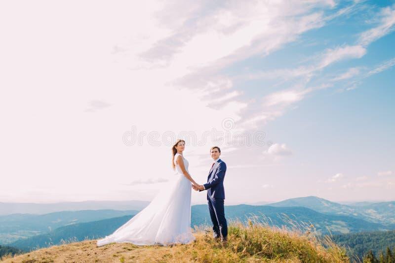 Schöne Jungvermählten, die ihre Hände auf den Hügel mit Waldbergen als Hintergrund halten stockfotos