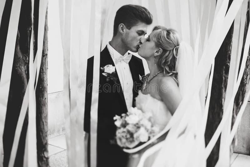 Schöne Küsse des verheirateten Paars, die mit weißem ribb umgeben werden lizenzfreies stockbild