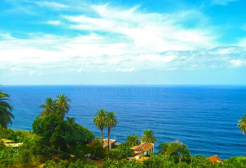Schöne Küste der Teneriffa-Palme, Kanarische Inseln, Spanien stockbild