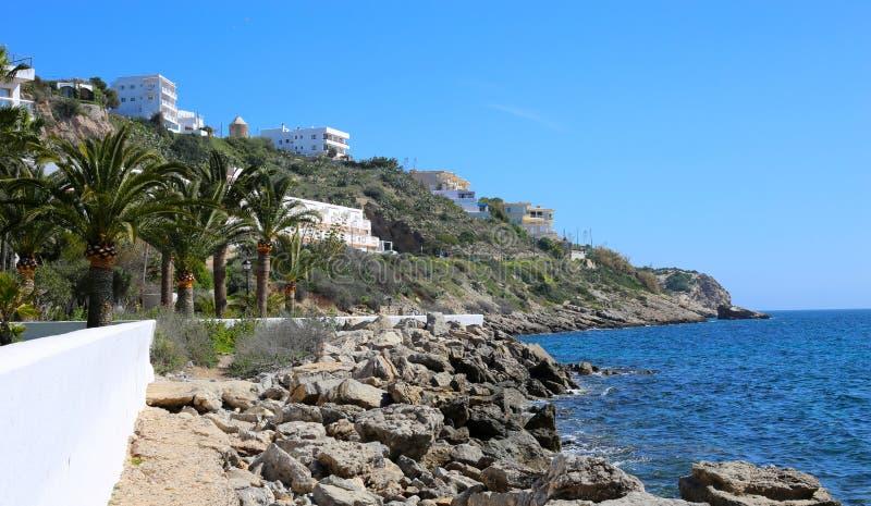 Schöne Küstenansicht mit einigen herrlichen Palmen und Felsen stockbilder