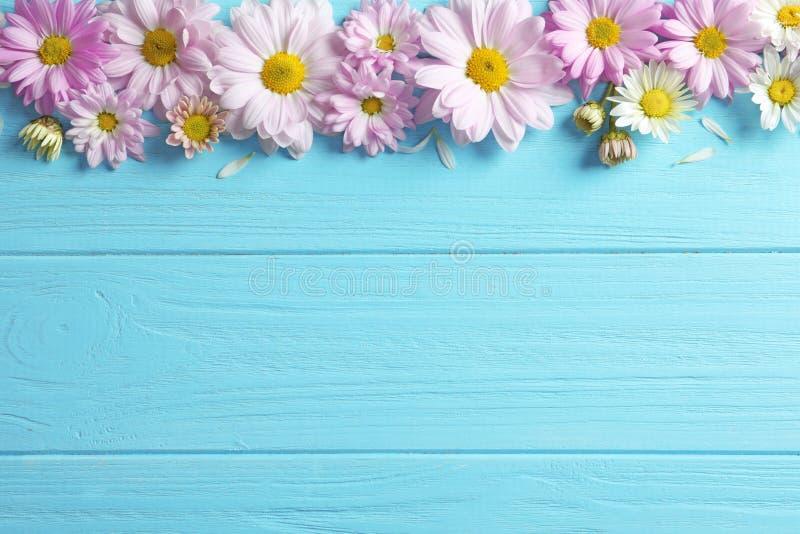 Schöne Kamillenblumen auf hölzernem Hintergrund stockfoto