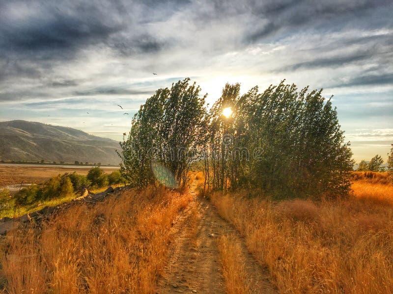 Schöne Kamloops-Wanderung stockbild