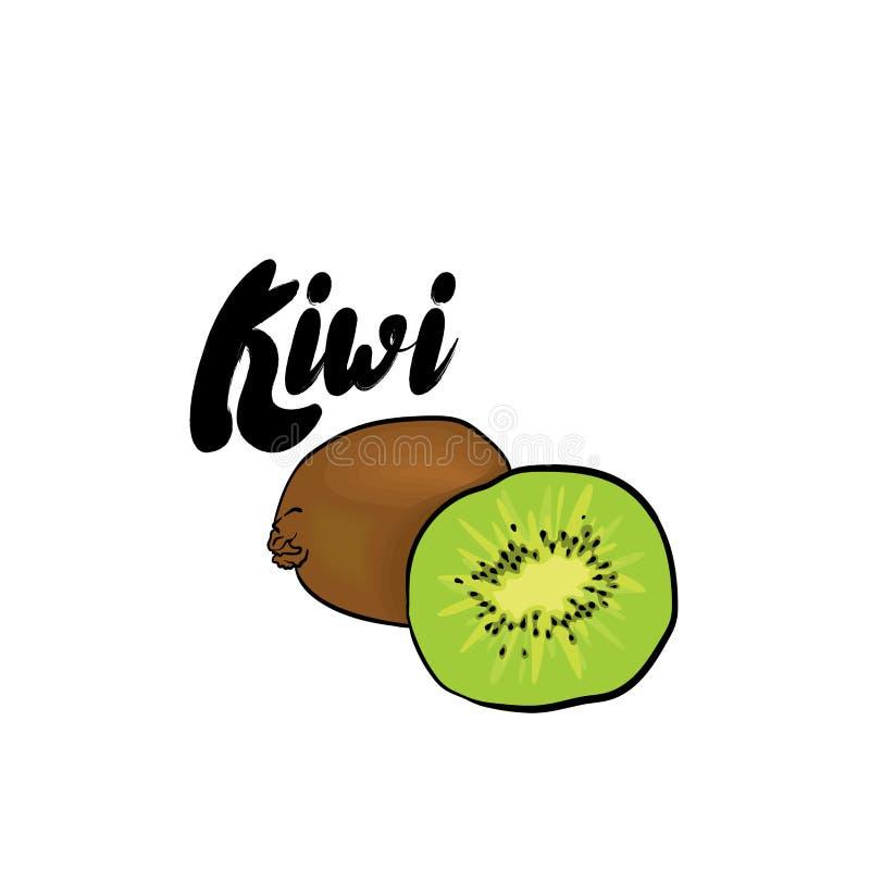 Schöne Kiwi Auch im corel abgehobenen Betrag Tropische Früchte lizenzfreie abbildung